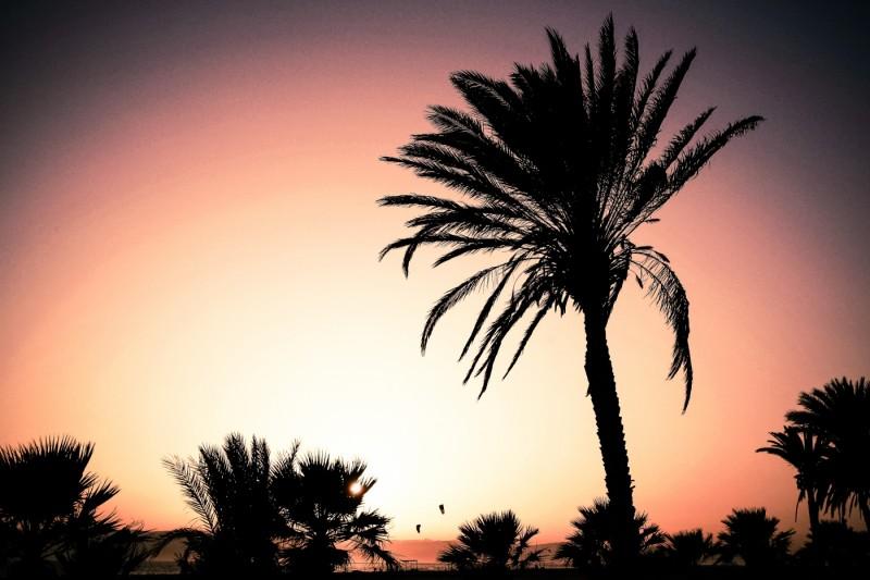 Egyptian tourist board travel photoshoot